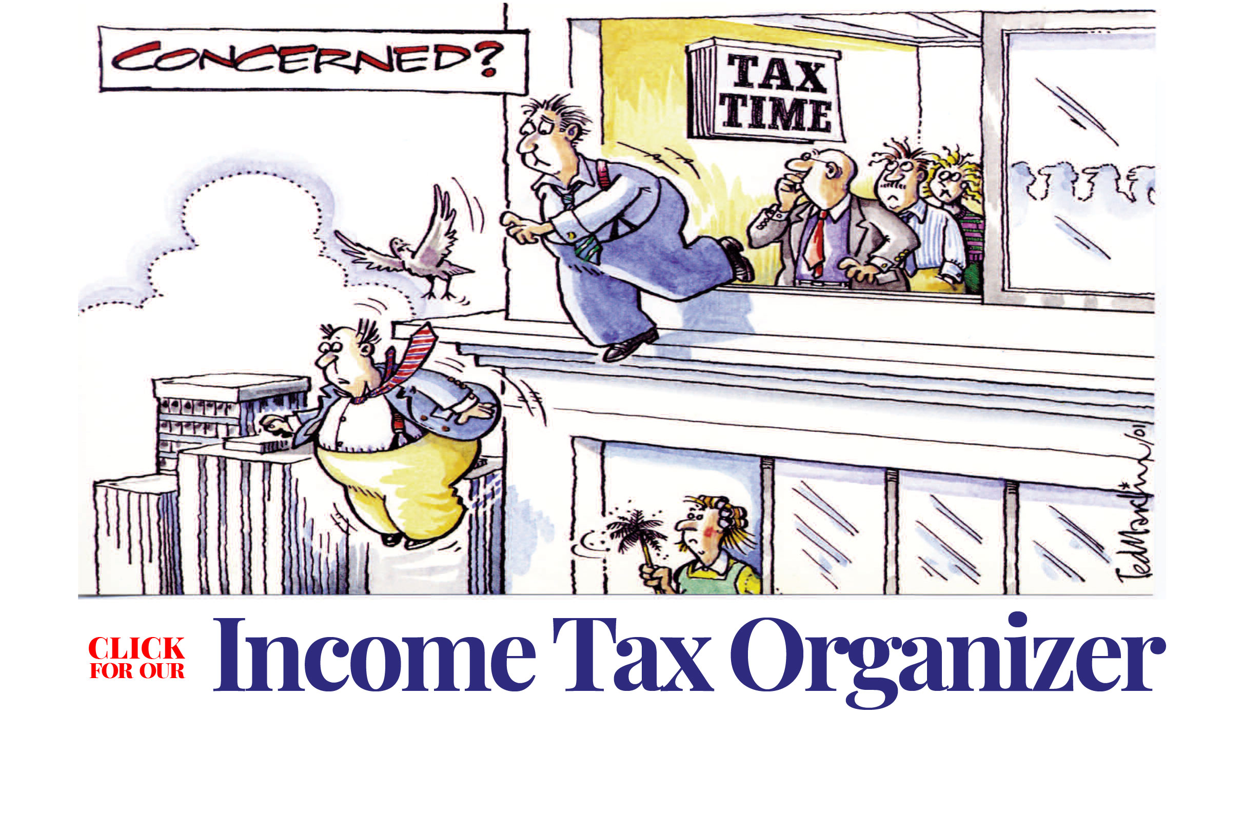 Income-Tax organizer